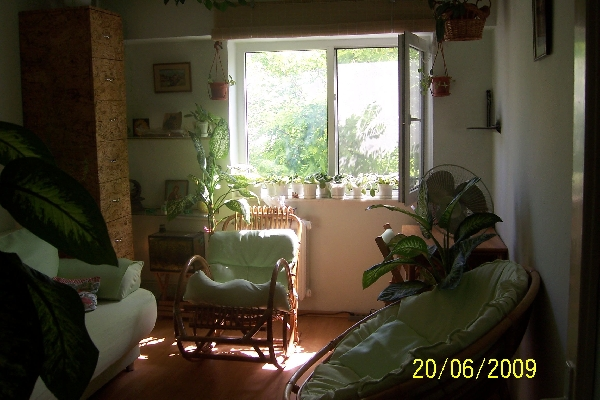 ...sau o perspectiva spre lumina exterioara... | Cabinet Individual de Psihologie Florina Nazare