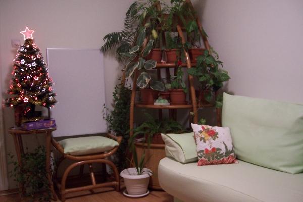 Un coltisor cald Iarna | Cabinet Individual de Psihologie Florina Nazare