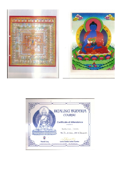 Diplome :<br />